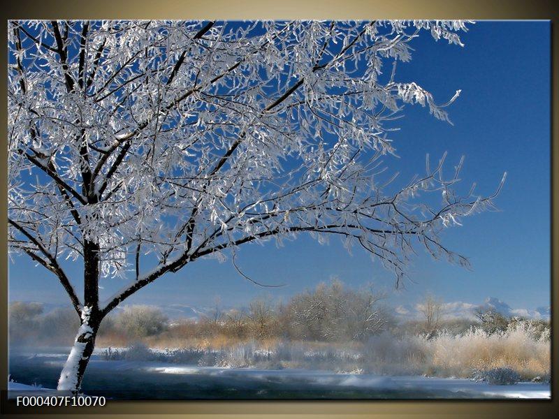 Obraz strom v zimě (F000407F10070)