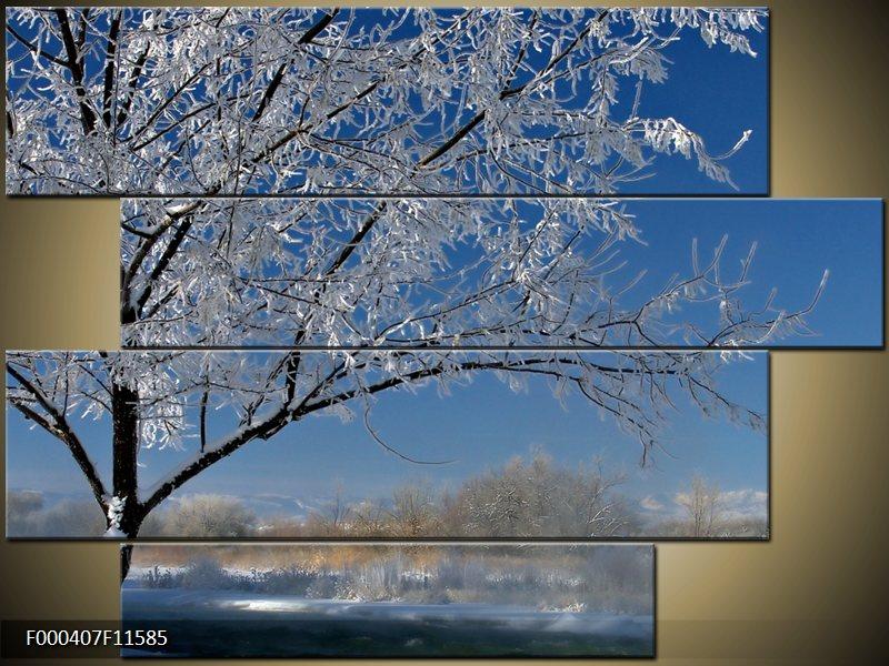 Obraz strom v zimě (F000407F11585)