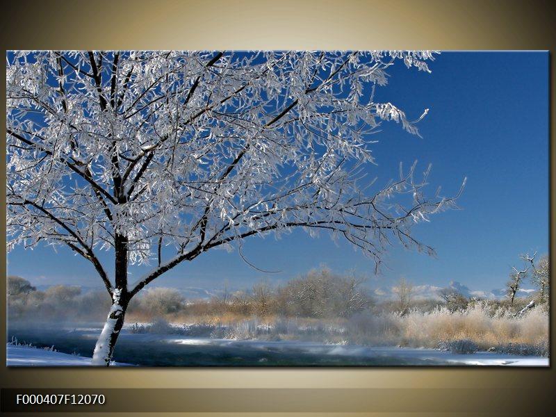 Obraz strom v zimě (F000407F12070)