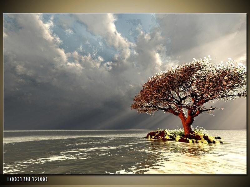 Obraz strom v moři (F000138F12080)