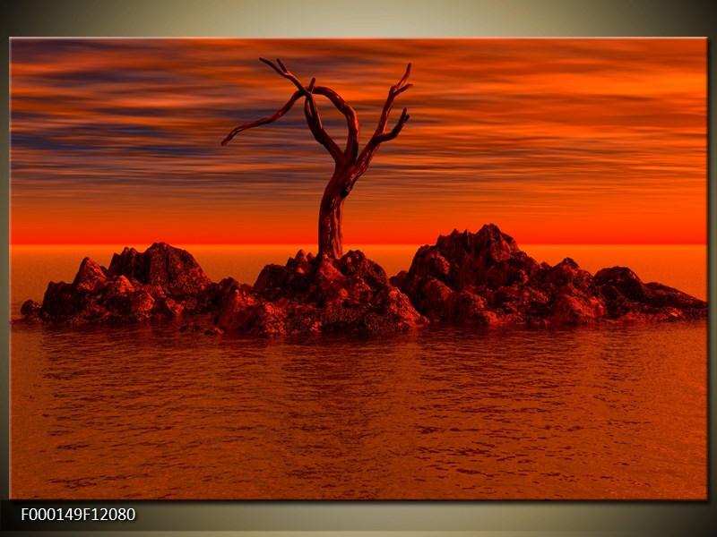 Obraz strom v moři (F000149F12080)