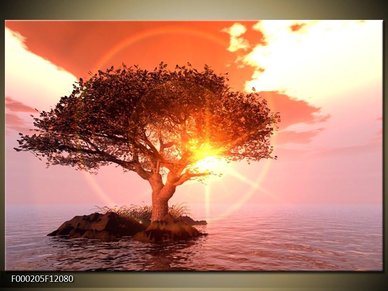 Obraz strom v moři (F000205F12080)