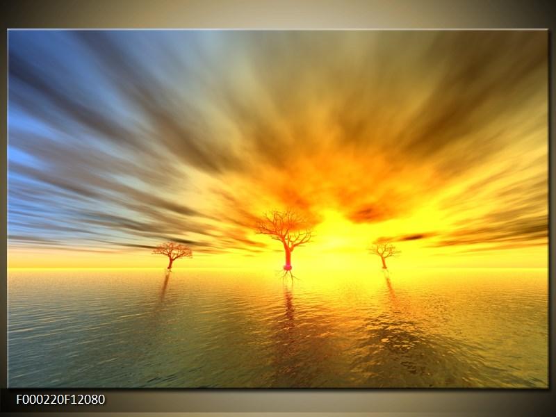 Obraz stromy v moři (F000220F12080)