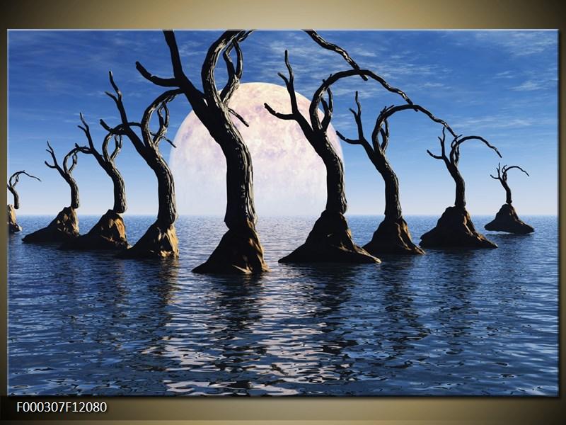 Obraz stromy v moři (F000307F12080)