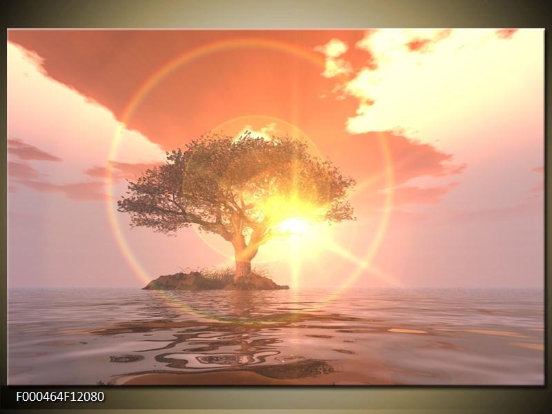 Obraz strom v moři (F000464F12080)