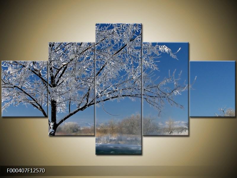 Obraz strom v zimě (F000407F12570)