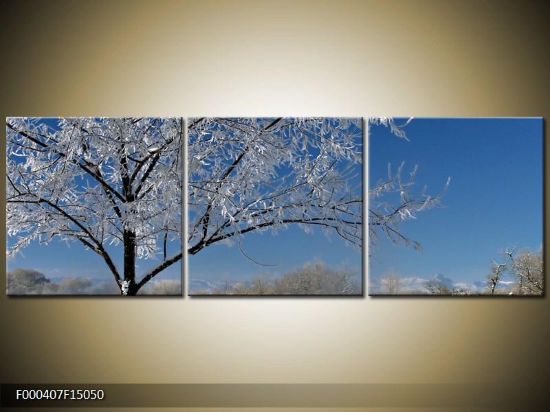 Obraz strom v zimě (F000407F15050)