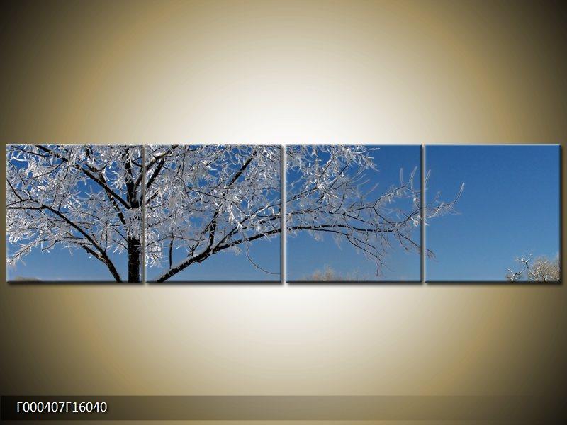 Obraz strom v zimě (F000407F16040)