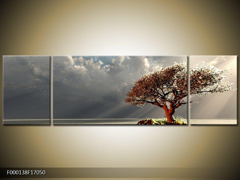 Obraz strom v moři (F000138F17050)