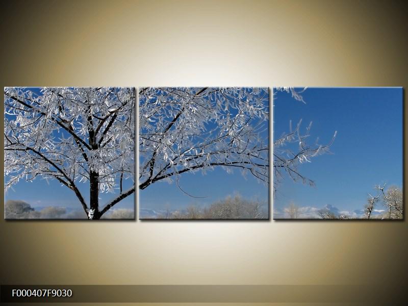 Obraz strom v zimě (F000407F9030)