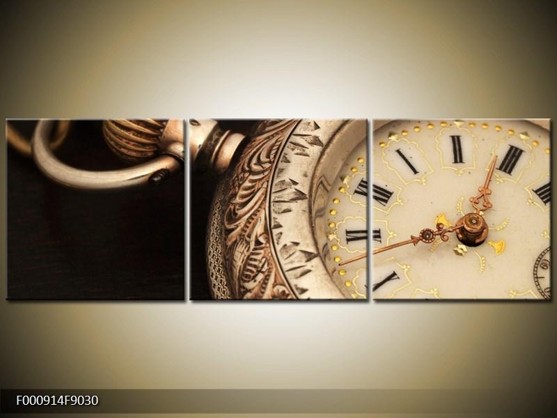 Obraz kapesní hodinky (F000914F9030)