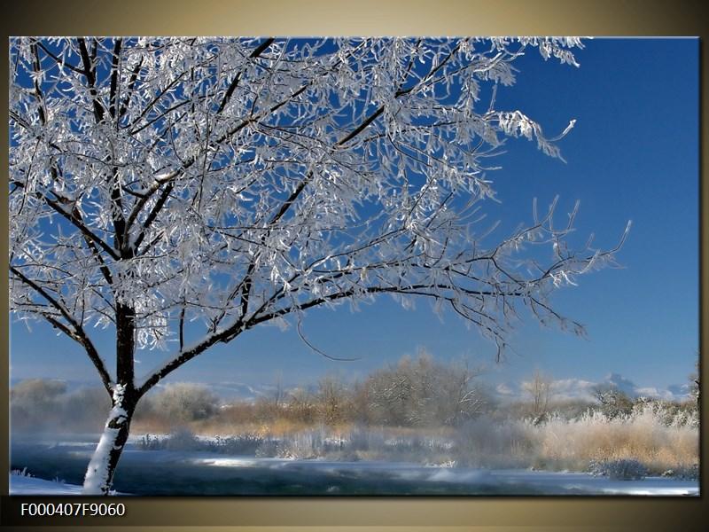 Obraz strom v zimě (F000407F9060)
